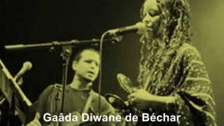 "Gaâda - Diwane de Béchar  ""Ziara"""