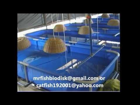 MOBILE FISH FARM, THE PERFECT FISH FARM JUST GOT BETTER