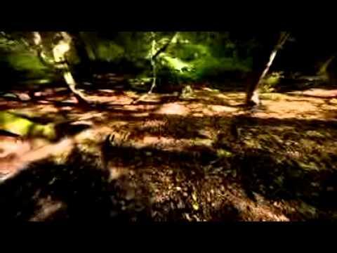 Sarah Brightman - Nella Fantasia