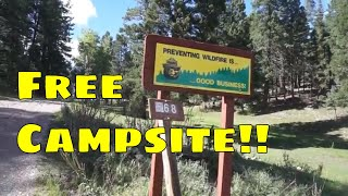 Free Campsite -  Cloudcroft, New Mexico | Lincoln National Forest