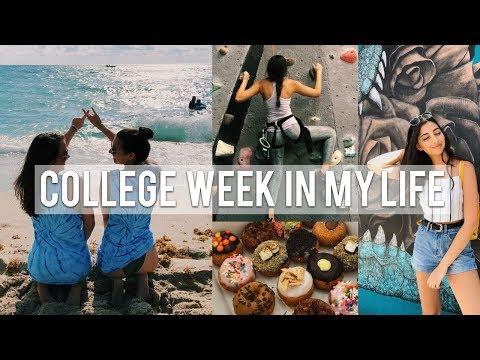COLLEGE WEEK IN MY LIFE   Florida Atlantic University