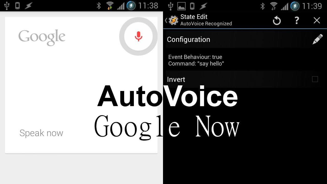 Autovoice variables