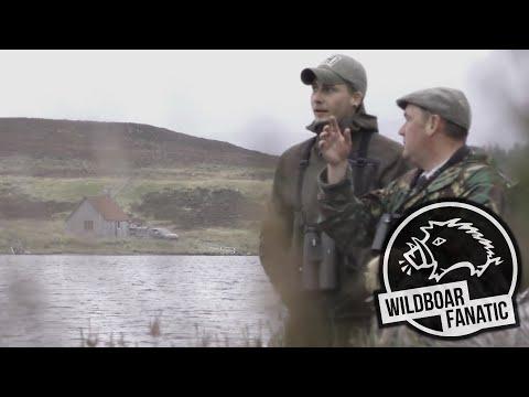Hirschjagd In Den Schottischen Highlands | 4K | Hunting Red Stags In Scotland