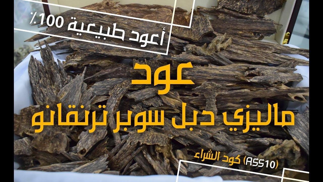 8a0da9974 فضل انواع العود   عود ماليزي دبل سوبر ترنقانو - YouTube