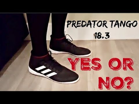 sports shoes 030c8 ee5a6 Adidas Predator Tango 18.3 Indoor Soccer Shoe Try On Full Review
