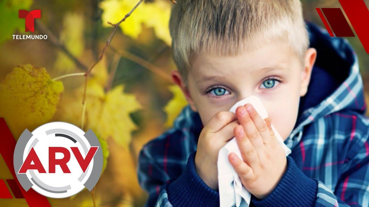 Seis enfermedades comunes en otoño y cómo prevenirlas | Al Rojo Vivo | Telemundo