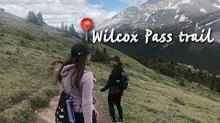 Gambar cover WILCOX PASS, Jasper Alberta, Canada (Travel Diary #02) || Jasmine Batarra