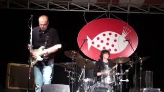 Greg Koch & Son play Jimi