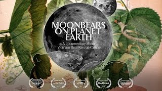 Moon Bears on Planet Earth ENG