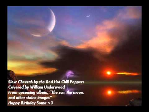 Slow Cheetah Coverhappy Birthday Soma Feat Timmy1192 Youtube
