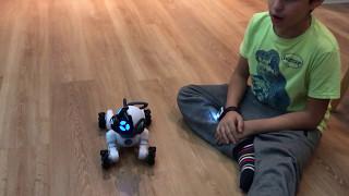 Tutorial para manejar al perro robot Chip