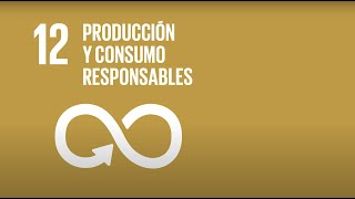 12 Producción y Consumo responsable -Agenda 2030-