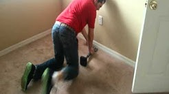 (813) 944 8004, Tampa Carpet Installation, Repair, & Cleaning Services