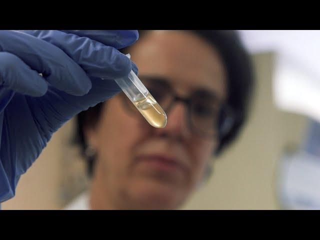 La investigación tiene muchos beneficios personales | María José Negro | Bio3