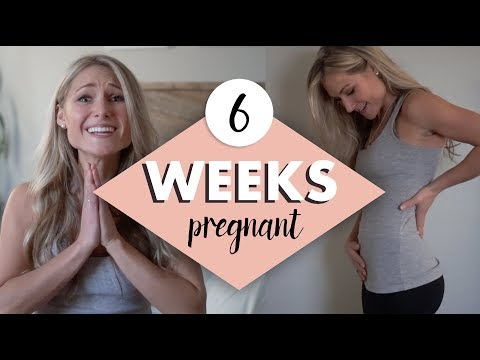 6 WEEKS PREGNANT My Symptoms, Emotions and Belly Shot!
