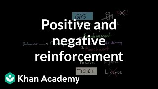 Operant Conditioning: Positive-and-Negative Reinforcement and Punishment