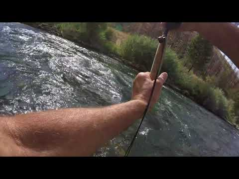 Huge Trout On My Tenkara Rod! South Fork Of The Boise River