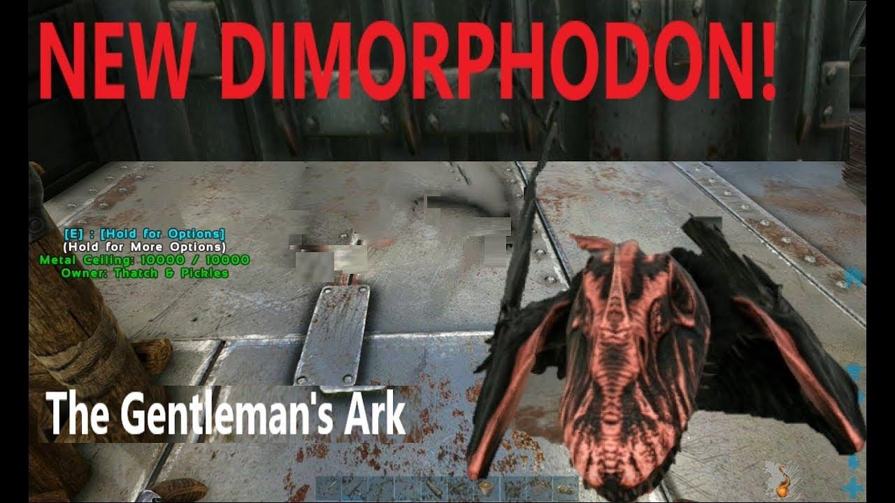 The Gentleman's Ark | Argy Time & the NEW Dimorphodon | EP8
