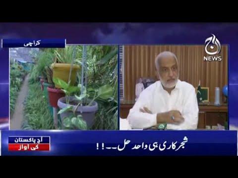Mulk Main Haryali 3 Fisad Say Bhi Kam   Aaj Pakistan Ki Awaz   13 September 2021   Aaj News