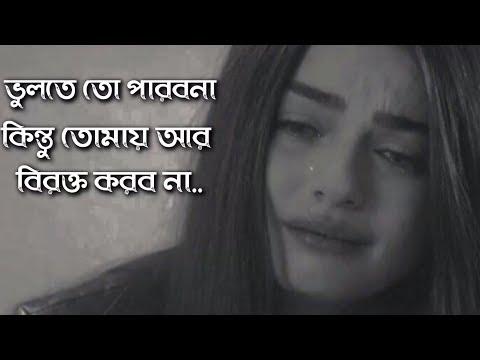 Tomay Ar Birokto Korbona | Bengali Sad audio - adho diary