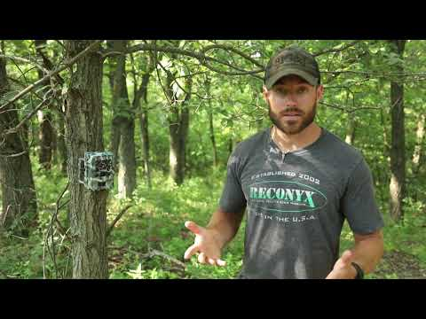 WHITETAIL UNIVERSITY: EPISODE 1: SCOUTING