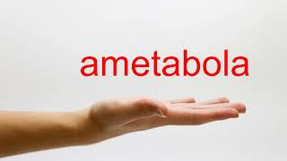 How to Pronounce ametabola American English