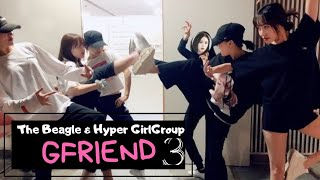 GFRIEND THE BEAGLE and HYPER GIRLGROUP PART 3