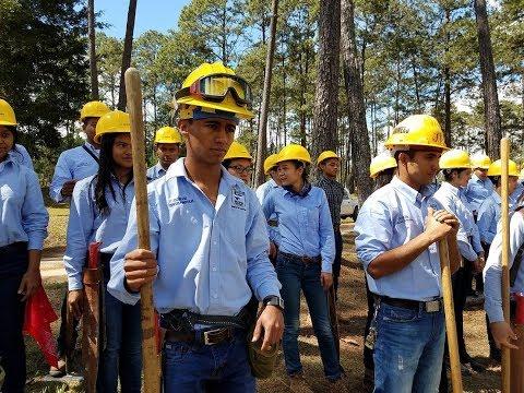 Brigada contra incendios forestales @unacifortv thumbnail