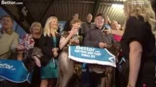 BETTOR.com Northern Irish Derby 2012 FINAL - Part 2