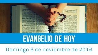 Evangelio de hoy domingo 6 de noviembre de 2016