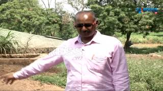 Success story of a Dairyman in Dairy Farming at  Ranga Reddy District | Paadi Pantalu