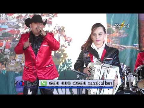 Kora Night Show Volts 4 40 EN VIVO