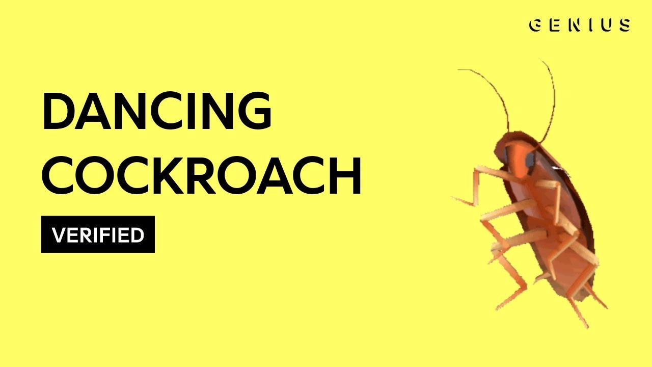 Dancing Cockroach Autotune Verified Youtube Download 4 cockroach dancing stock illustrations, vectors & clipart for free or amazingly low rates! dancing cockroach autotune verified