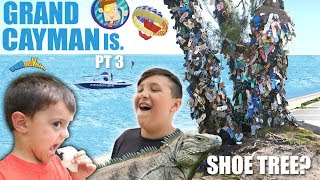 a Tree that Grows Shoes? (FV Family Cayman Islands Activities Tour) Video