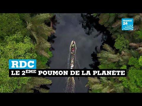 RDC, le 2ème poumon de la planète