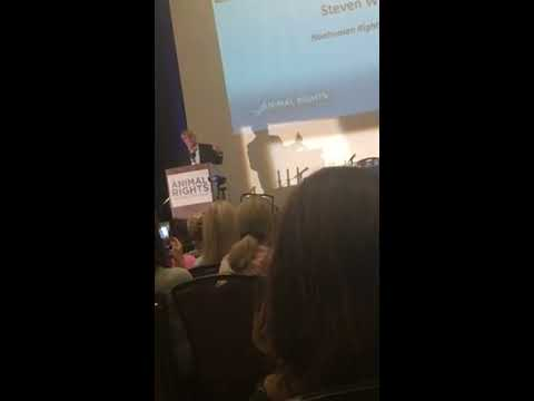 Steven M. Wise - Now Is The Time To Demand Legal Rights For Nonhuman Animals