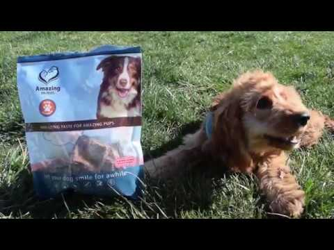 lamb-lung---premium-dog-treats---all-natural---excellent-reward-treat-for-training