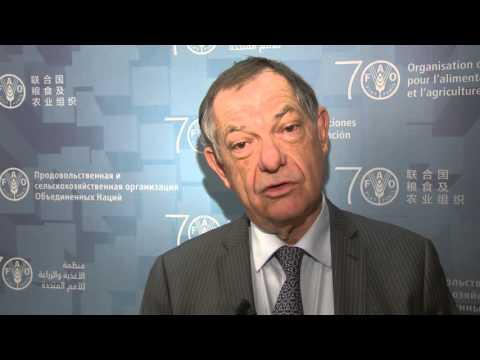 OIE Director-General on joint efforts for global animal health
