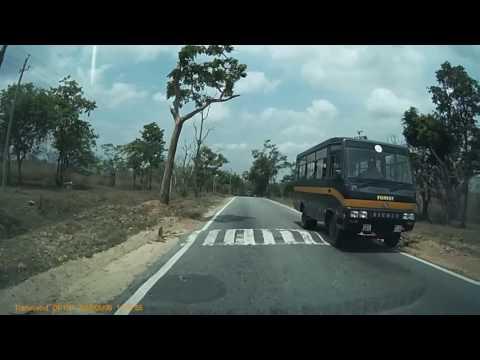 UNCUT Video - Drive through the Jungle!! Bandipur & Mudumalai National Parks