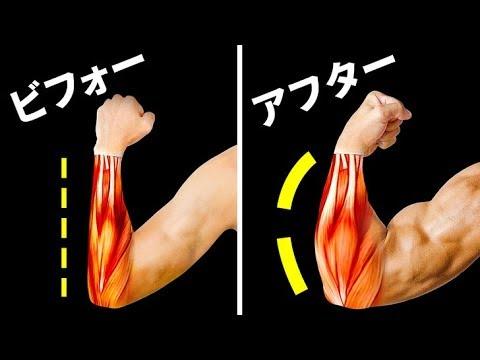 トレ 前腕 筋