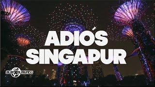 Adiós Singapur! | Singapur #8