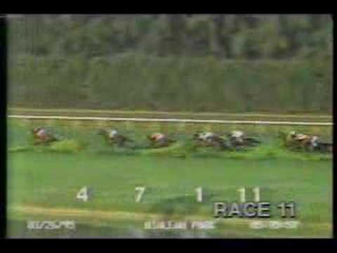 Hialeah Park - 1995 Royal Palm Handicap