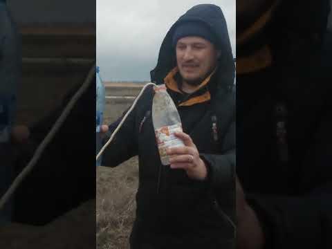 Новоузенск, аномалия с проволочками VID 20190406 131504