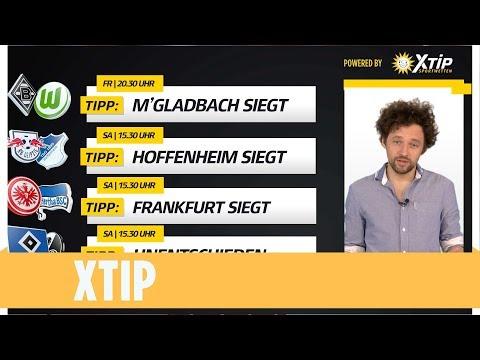HSV und Köln schaffen es wieder nicht zu gewinnen | Die Tipps zum 31. Spieltag | XTIP