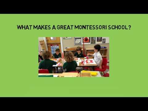 Montessori Seeds of Education-What makes a great Montessori School?