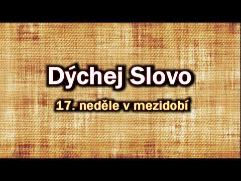 """22. Dýchej Slovo - """"Reflexe"""" (Mt 13,44-52)"""