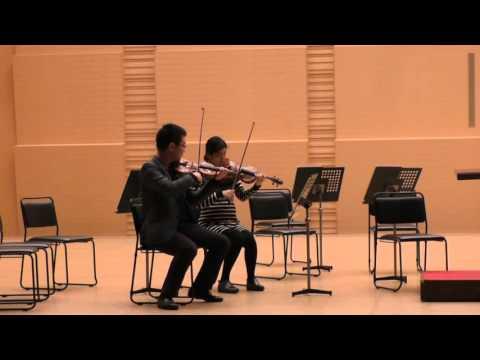 【1st violin】Mozart: Eine Kleine nacht musik