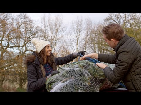 Kat Jackson - When NOT to buy that Christmas tree