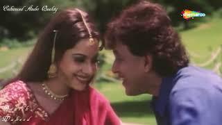 Tere Bin Zindagi | HD Audio Quality | Heeralal Panalal | Udit Naryan | Anuradha Paudwal | By Danish