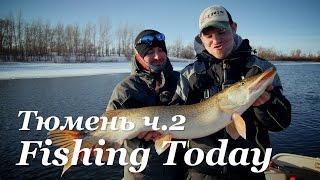 Бажаний трофей. Тюмень ч. 2 - Fishing Today